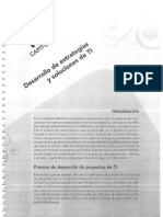 Capítulo 11 Desarrollo de Estrategias y Soluciones de TI