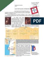 dinastias portuguesas