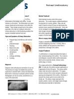 Perineal Urethrostomy PU