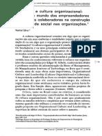 Culutra Organizacional Livro Narbal Silva
