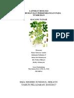 Laporan Biologi Kacang Tanah