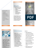 triptico de braulio.pdf
