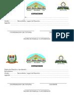 Formatos de Atencion Pp Ff y Estudiante