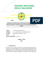 INFORME DE FITO AGRICOLA.docx