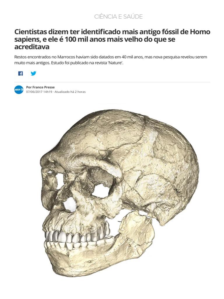 e56563824c83c8 Cientistas Dizem Ter Identificado Mais Antigo Fóssil de Homo Sapiens, e Ele  é 100 Mil Anos Mais Velho Do Que Se Acreditava _ Ciência e Saúde _ G1