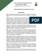 13 Concejo de Seguridad Ciudadana (1)