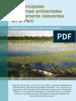 Principales problemas ambientales Peru.pdf