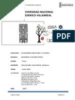 CAIDA LIBRE.docx Adjuntado (1)