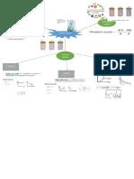Mapa Mental Cinetica quimica