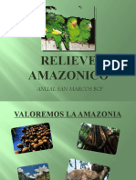 Relieve Amazonico