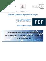 Projet1 (1).docx