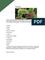 planta carnivora.docx