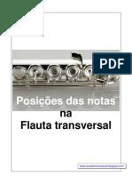Posiçoes da notas na Flauta transversal