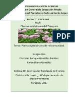 proyecto 3º año revisado.docx