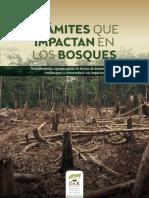 Libro Sobre Bosques (1)