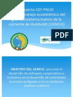 Proyecto GEF
