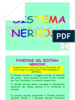 11-Sistema Nervoso 2017