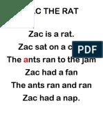 ZAC THE RAT