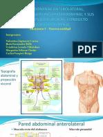 Seminario III de Anatomía Humana