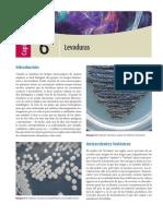 330233720-10-levaduras-Bonifaz.pdf