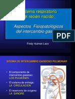 Fisiol Resp RN Intercambio Gaseoso