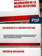 Valoracion de La Funcion Intestinal