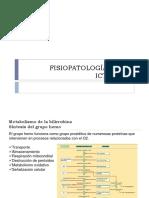 Fp Ictericia