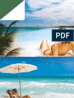 manual_palace.pdf