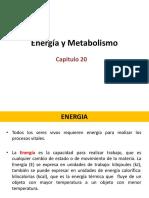 20. ENERGIA Y METABOLISMO.pdf