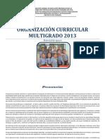 Organizacion Curricular 2013 Veracruz