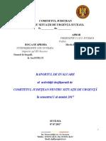 Analiza Activitatii Cjsu Sem i 2017