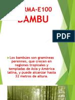 BAMBU ESTRUCTURAL