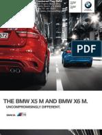 2010 BMW X6M Checkered Flag Virginia Beach VA