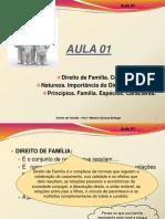 DIREITO DA FAMILIA - DIREITO CIVIL