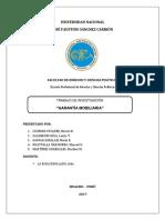 Trabajo de Investigación Garantía Mobiliaria Con Indice