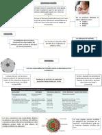 PEDIATRIA rinofaringitis