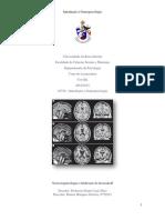 Neuropsicologia Trabalho 1