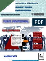 Deontologia - Perfil Profesional