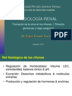 Fisiologia Renal 1