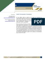 dimencion economica.pdf