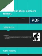 Delitos informáticos del fuero federal.pptx