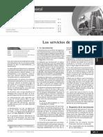 servicios de tercerizacion.pdf
