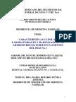 L-Artritis estadisticas-001.pdf