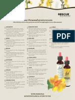 Bach_Questionnaire_English2010.pdf