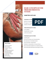 Basic Concepts of the Musculoskeletal System