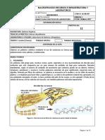 12.polimeros