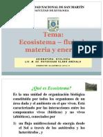 Ecosistemas- flujo materia energia.ppt