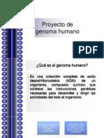 Proyecto de Genoma Humano