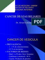19.1-Cancer de Vias Biliares-Dr.celestino 23-06-11