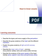 10 - Heart & Great Vessels (FF)